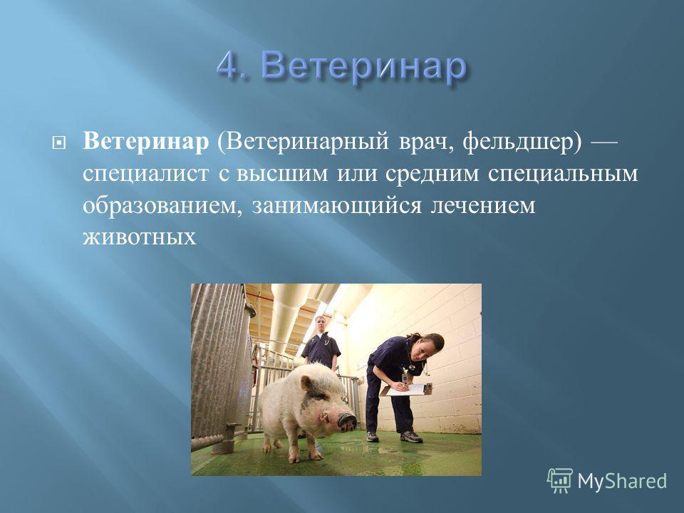 Ветеринар ( Ветеринарный врач, фельдшер ) специалист с высшим или средним специальным образованием, занимающийся лечением животных