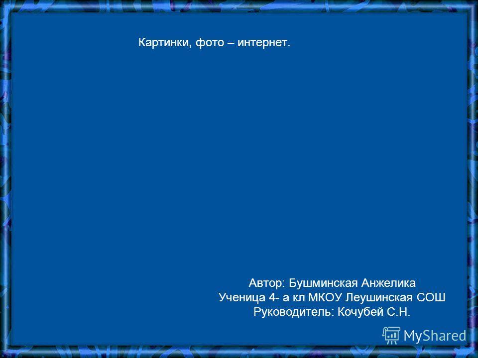 Автор: Бушминская Анжелика Ученица 4- а кл МКОУ Леушинская СОШ Руководитель: Кочубей С.Н. Картинки, фото – интернет.