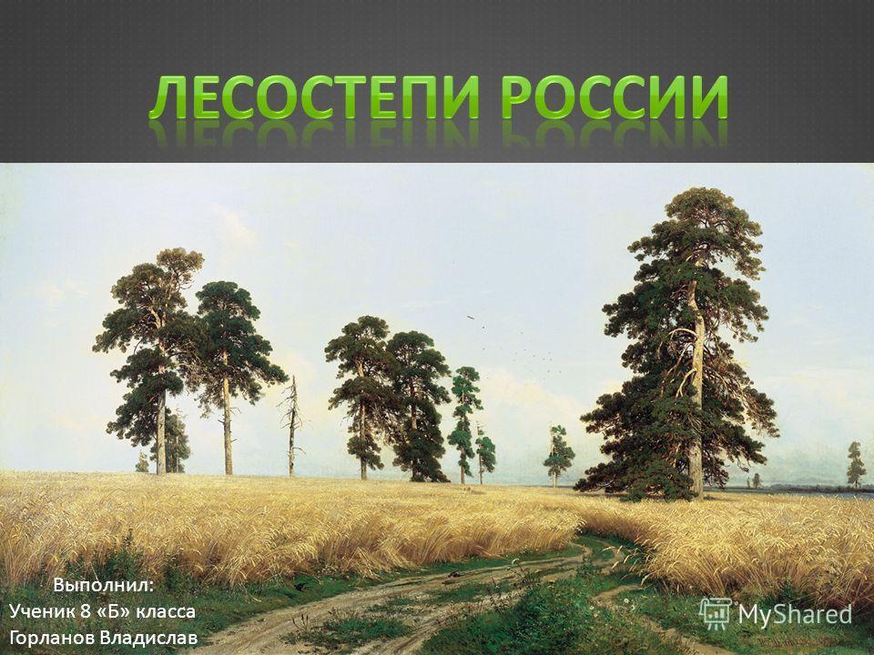 Выполнил: Ученик 8 «Б» класса Горланов Владислав