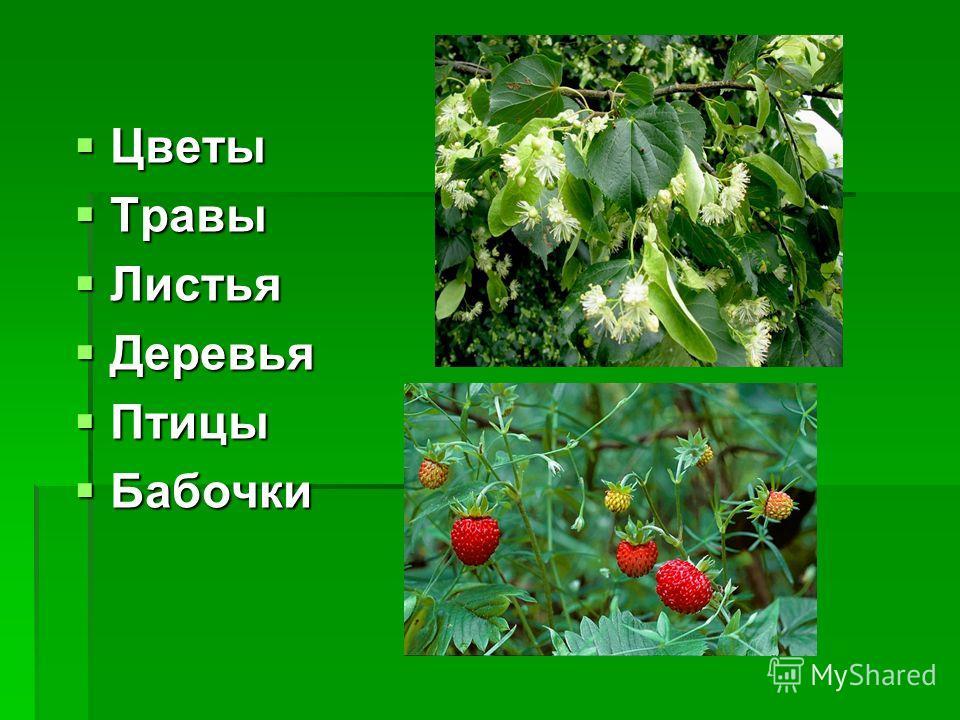 Цветы Цветы Травы Травы Листья Листья Деревья Деревья Птицы Птицы Бабочки Бабочки