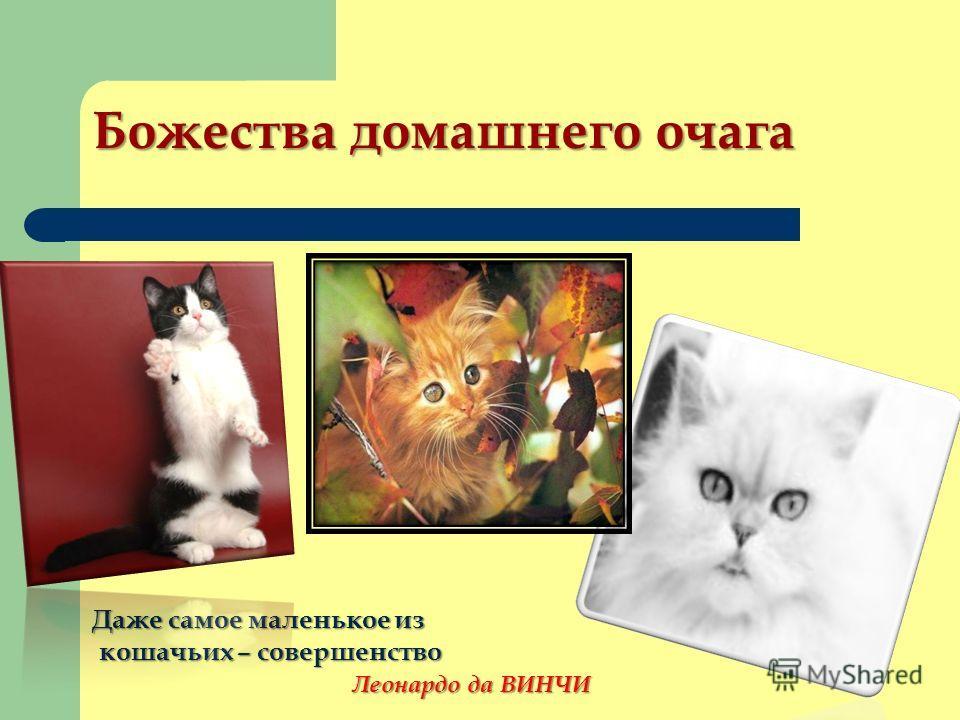 Божества домашнего очага Даже самое маленькое из кошачьих – совершенство кошачьих – совершенство Леонардо да ВИНЧИ Леонардо да ВИНЧИ
