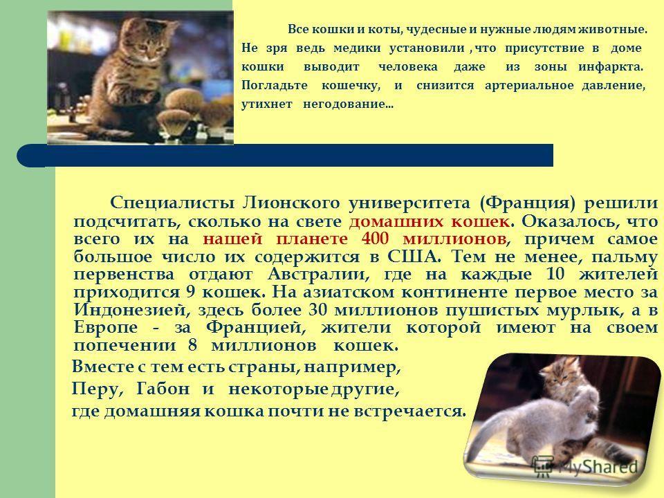 Все кошки и коты, чудесные и нужные людям животные. Не зря ведь медики установили, что присутствие в доме кошки выводит человека даже из зоны инфаркта. Погладьте кошечку, и снизится артериальное давление, утихнет негодование... Специалисты Лионского