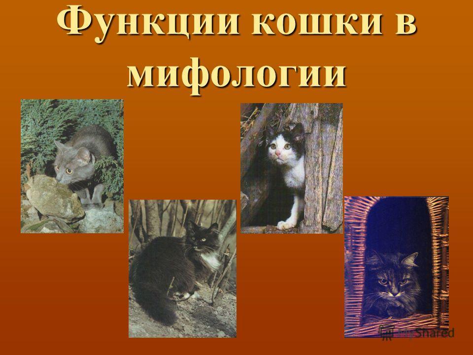 Функции кошки в мифологии