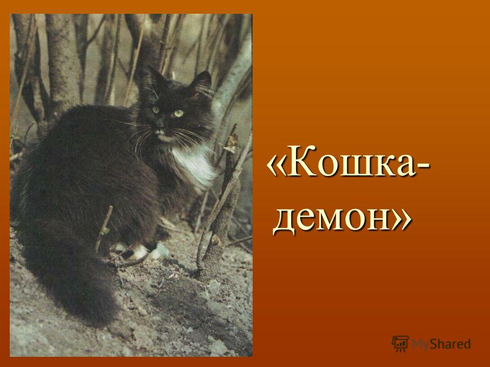 «Кошка- демон» «Кошка- демон»
