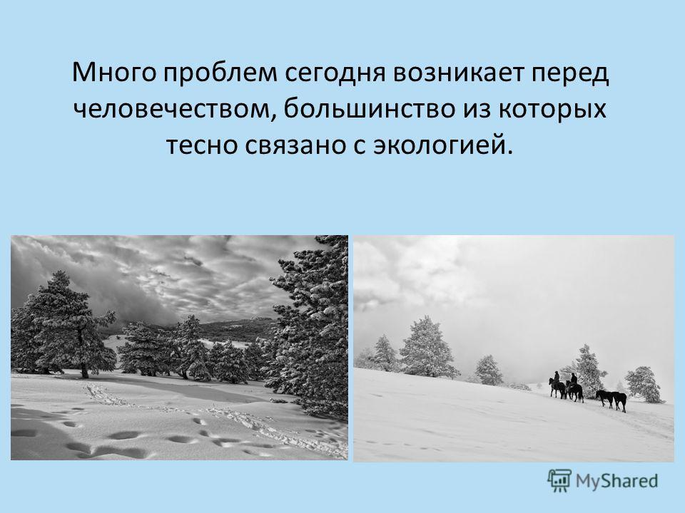 Много проблем сегодня возникает перед человечеством, большинство из которых тесно связано с экологией.