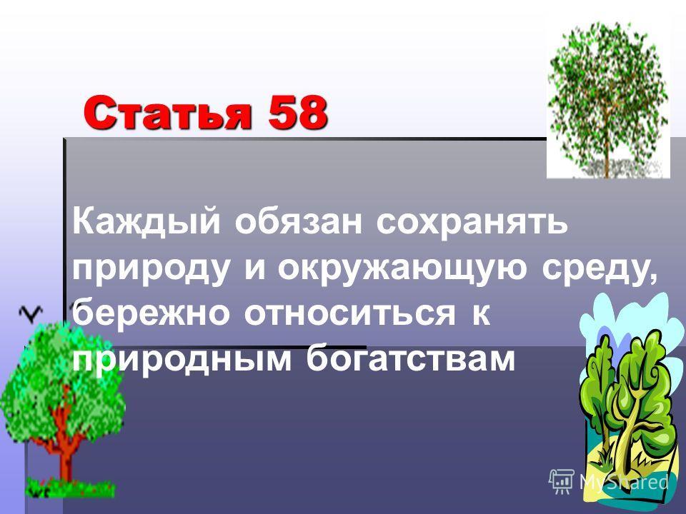 Каждый обязан сохранять природу и окружающую среду, бережно относиться к природным богатствам Статья 58