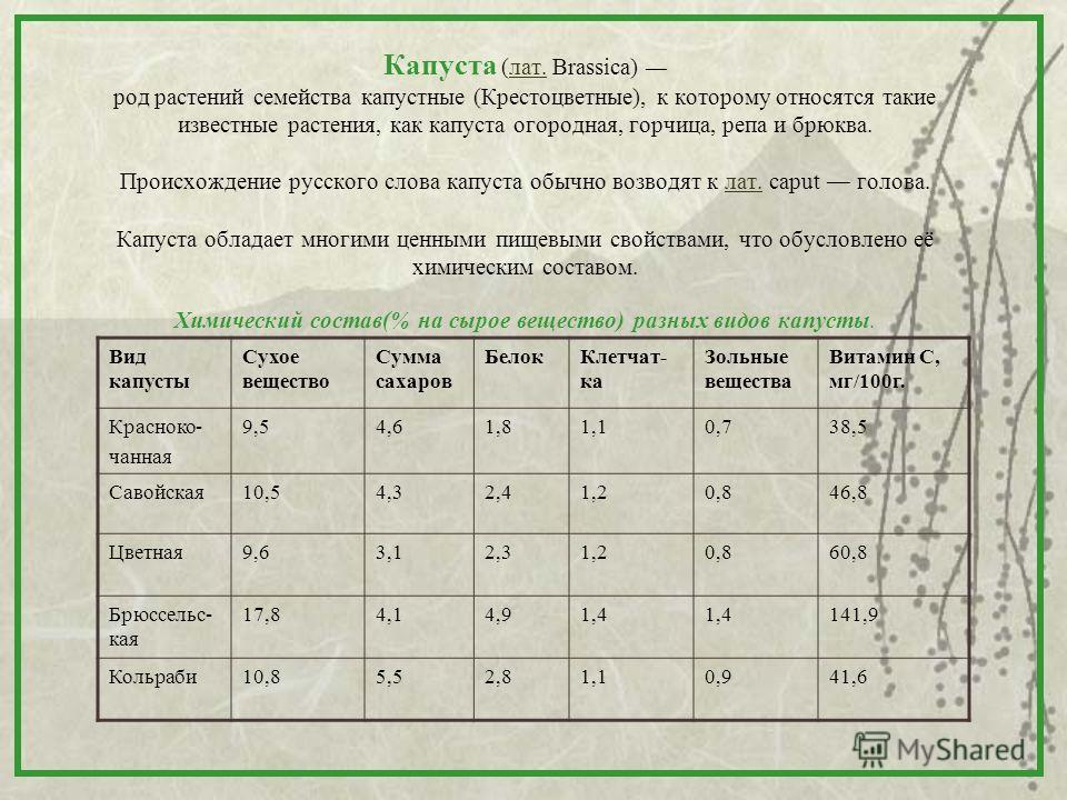 Капуста (лат. Brassica) род растений семейства капустные (Крестоцветные), к которому относятся такие известные растения, как капуста огородная, горчица, репа и брюква. Происхождение русского слова капуста обычно возводят к лат. caput голова. Капуста