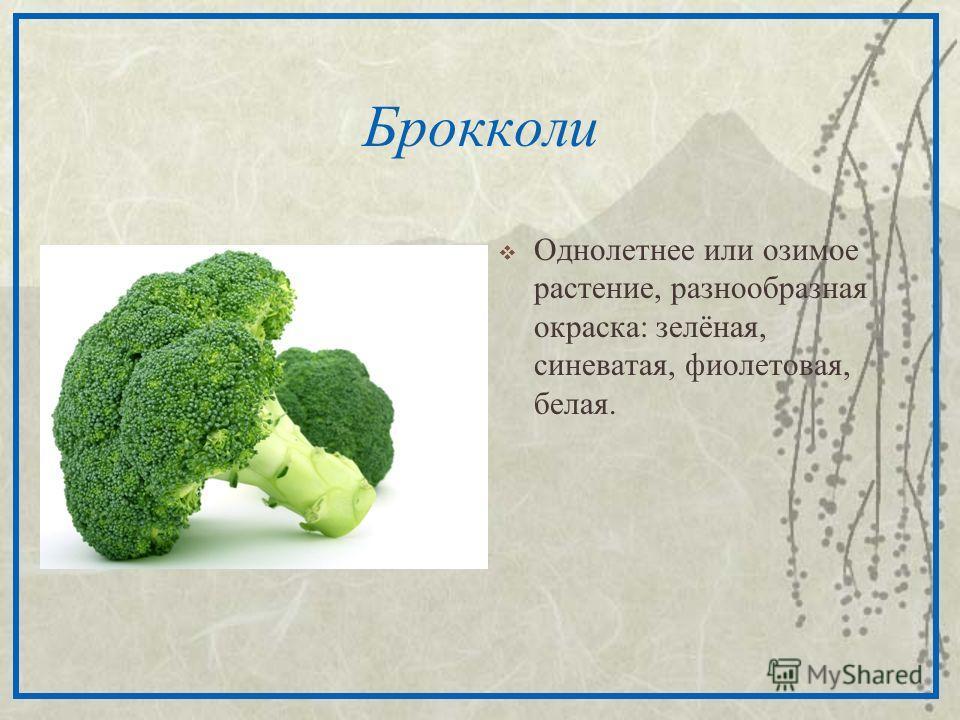 Брокколи Однолетнее или озимое растение, разнообразная окраска: зелёная, синеватая, фиолетовая, белая.
