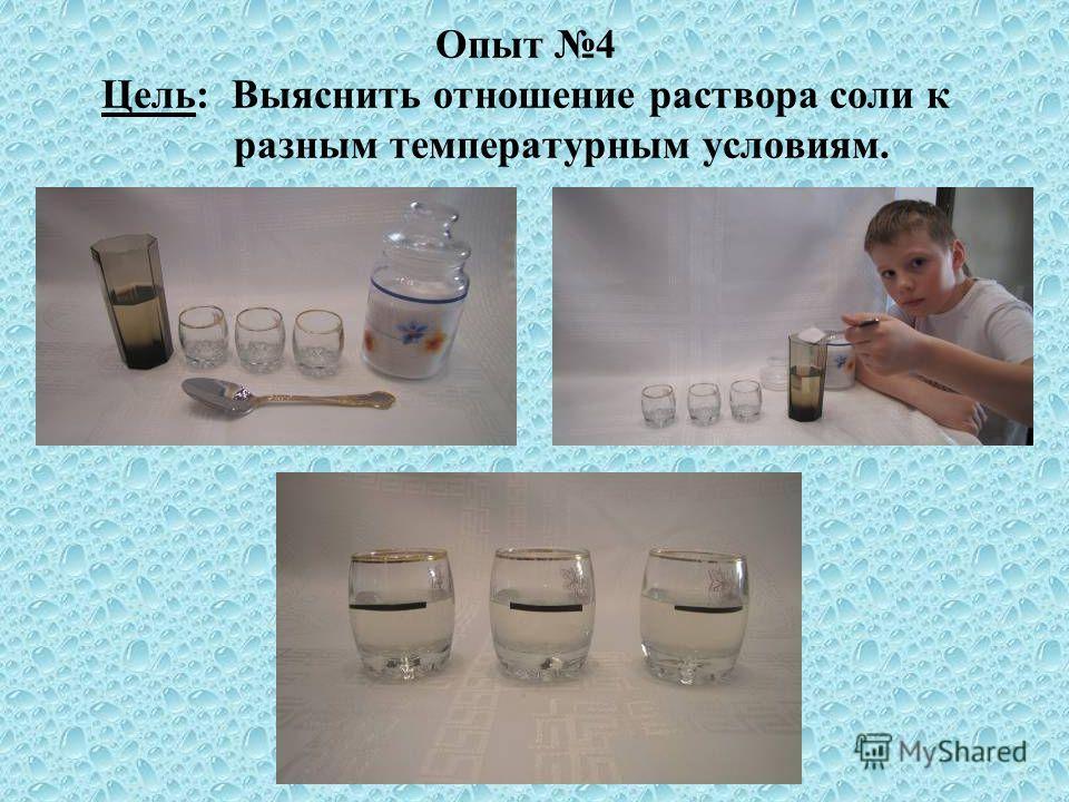 Опыт 4 Цель: Выяснить отношение раствора соли к разным температурным условиям.