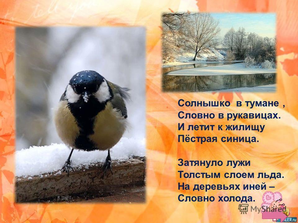 В инее ложбины, В огоньках рябины. Дятел клювом бьёт – Зиму в гости ждёт.