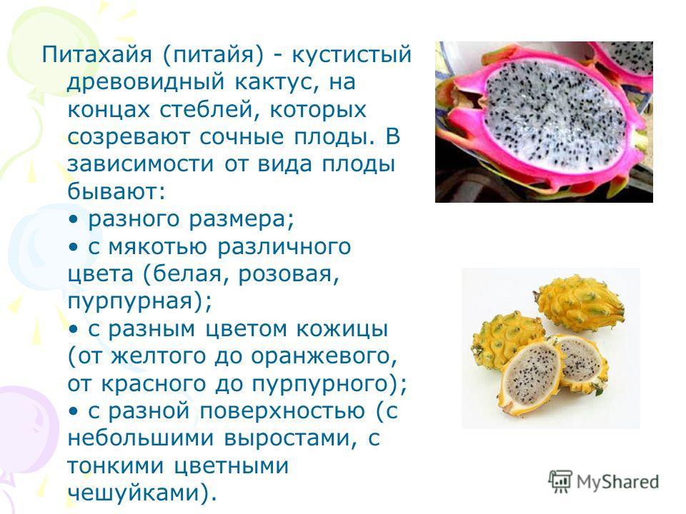 Питахайя (питайя) - кустистый древовидный кактус, на концах стеблей, которых созревают сочные плоды. В зависимости от вида плоды бывают: разного размера; с мякотью различного цвета (белая, розовая, пурпурная); с разным цветом кожицы (от желтого до ор