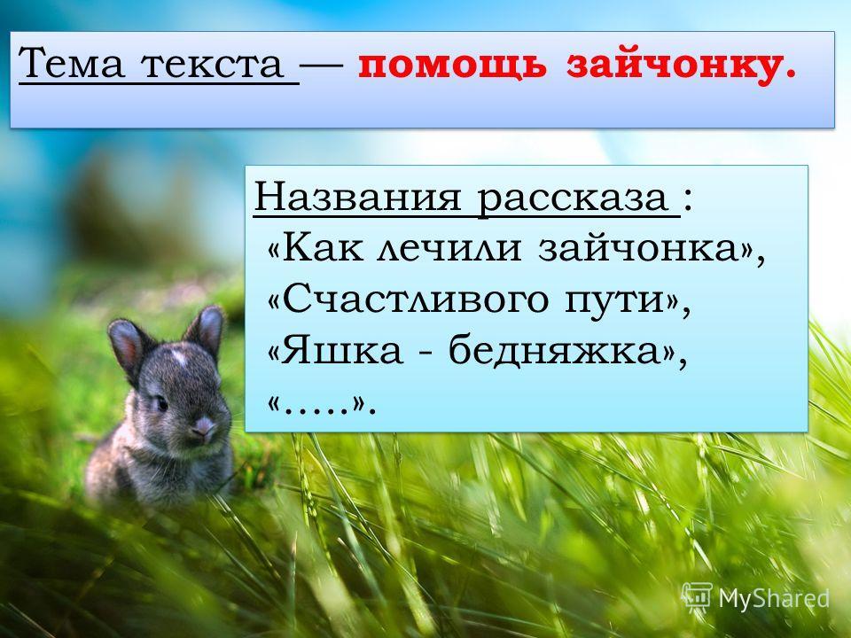 Тема текста помощь зайчонку. Названия рассказа : «Как личили зайчонка», «Счастлевого пути», «Яшка - бедняжка», «…..». Названия рассказа : «Как личили зайчонка», «Счастлевого пути», «Яшка - бедняжка», «…..».