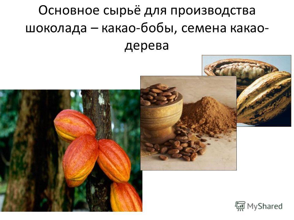 Основное сырьё для производства шоколада – какао-бобы, семена какао- дерева