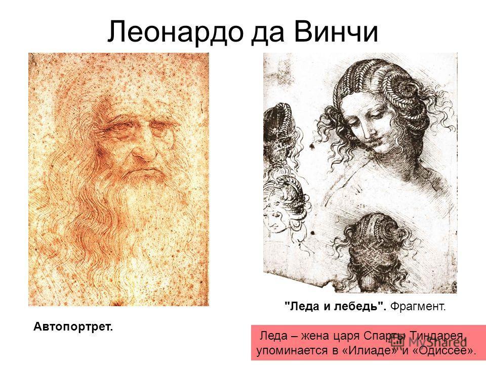 Леонардо да Винчи Автопортрет. Леда и лебедь. Фрагмент. Леда – жена царя Спарты Тиндарея, упоминается в «Илиаде» и «Одиссее».