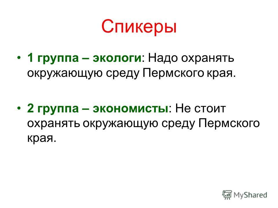 Спикеры 1 группа – экологи: Надо охранять окружающую среду Пермского края. 2 группа – экономисты: Не стоит охранять окружающую среду Пермского края.