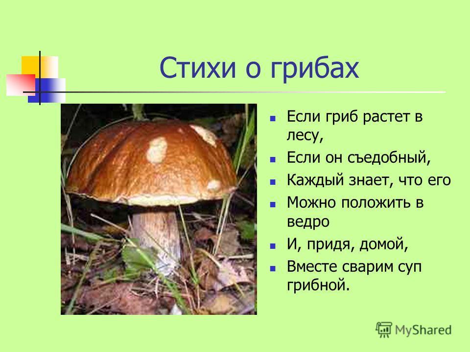Стихи о грибах Если гриб растет в лесу, Если он съедобный, Каждый знает, что его Можно положить в ведро И, придя, домой, Вместе сварим суп грибной.