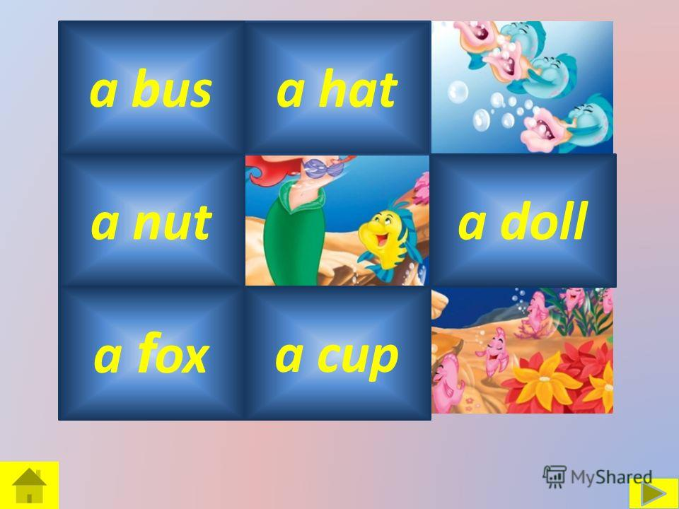 a dress a hata bus a nut a f ox a doll a cup