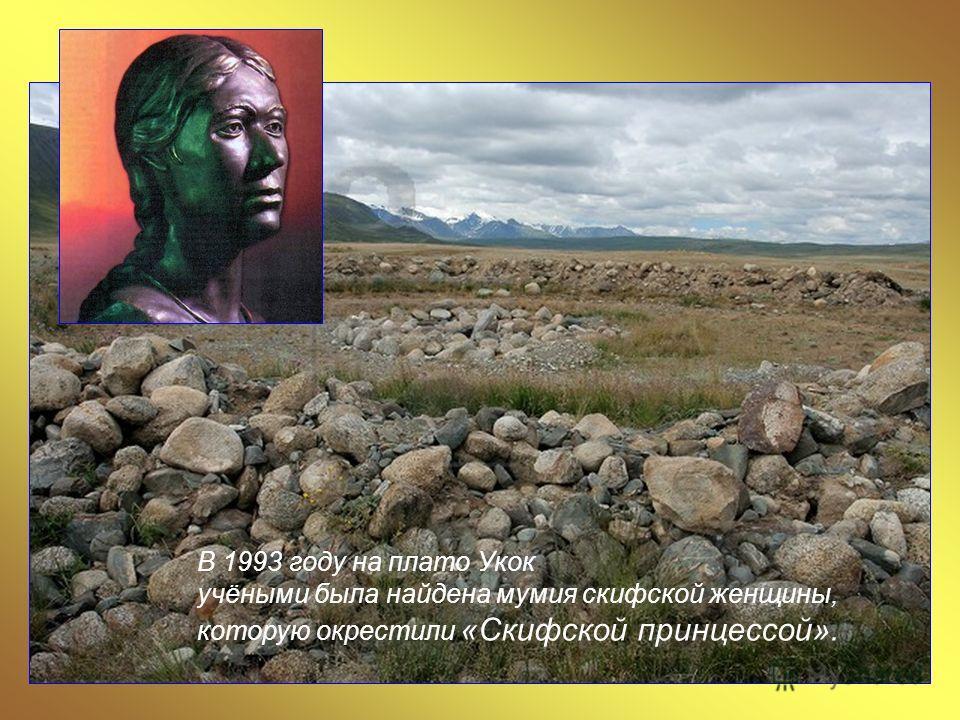 В 1993 году на плато Укок учёными была найдена мумия скифской женщины, которую окрестили «Скифской принцессой».