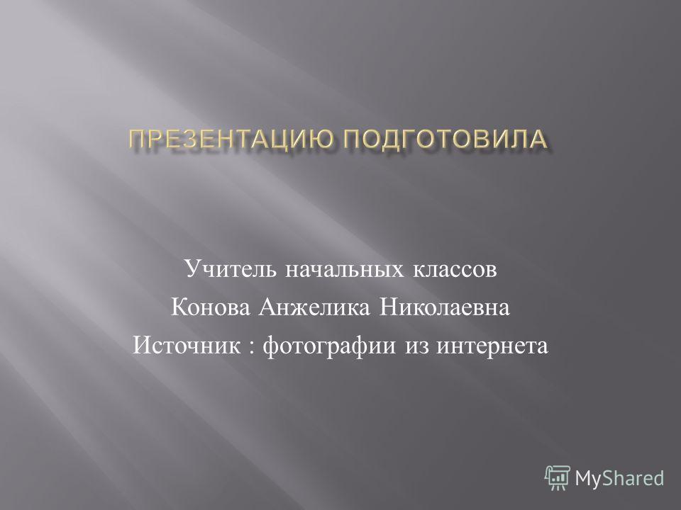 Учитель начальных классов Конова Анжелика Николаевна Источник : фотографии из интернета
