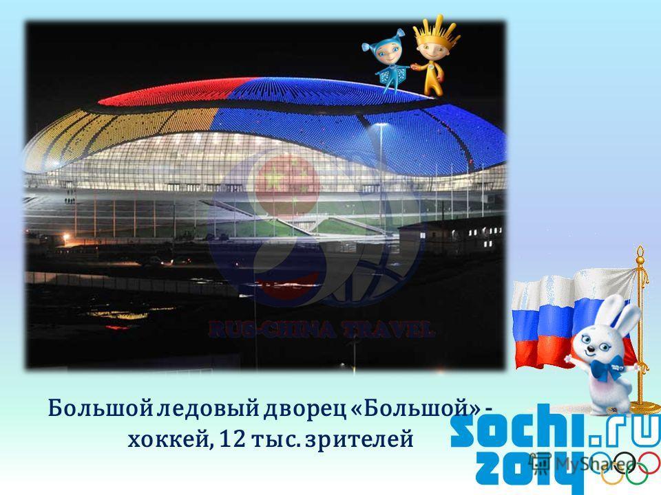 Большой ледовый дворец «Большой» - хоккей, 12 тыс. зрителей
