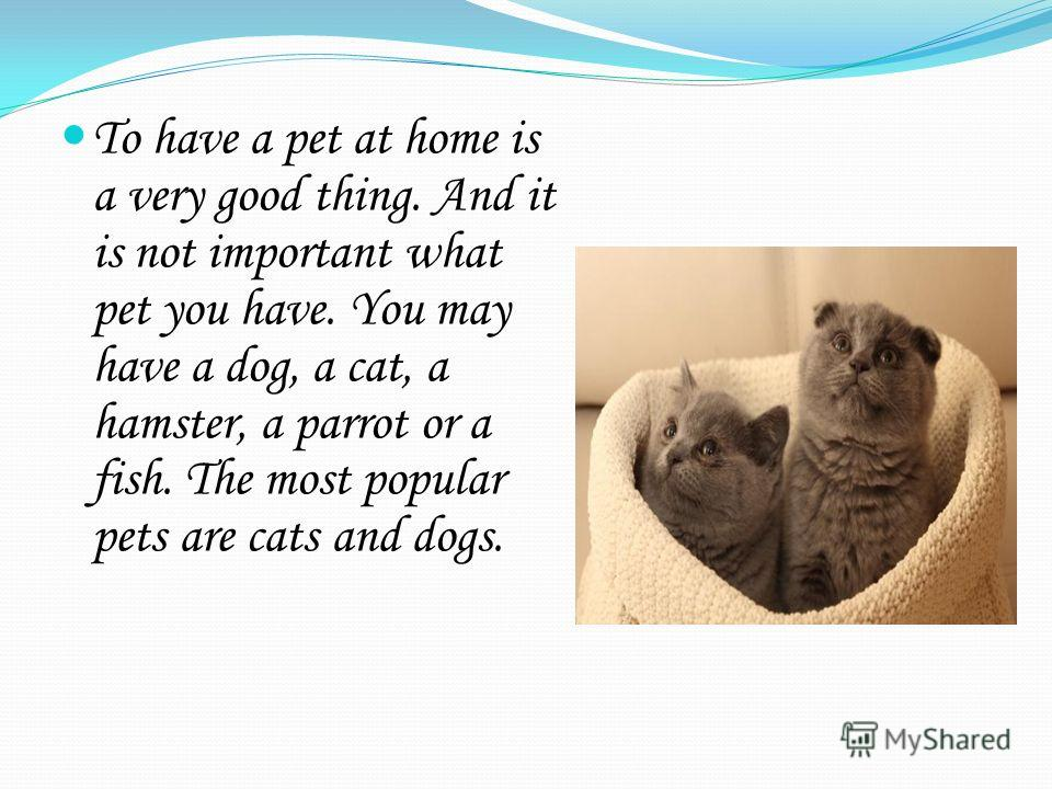 To have a pet at home is a very good thing. And it is not important what pet you have. You may have a dog, a cat, a hamster, a parrot or a fish. The most popular pets are cats and dogs.