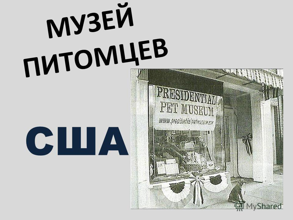 МУЗЕЙ ПИТОМЦЕВ США