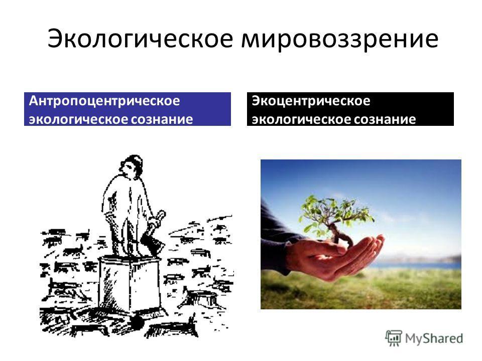 Экологическое мировоззрение Антропоцентрическое экологическое сознание Экоцентрическое экологическое сознание