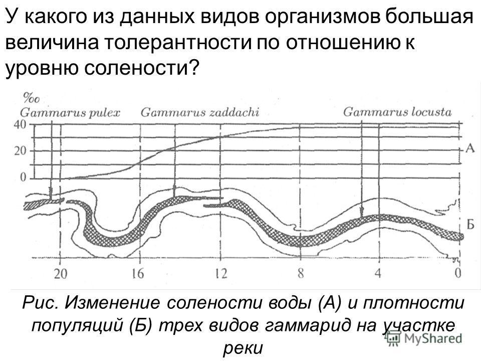 Рис. Изменение солености воды (А) и плотности популяций (Б) трех видов гаммарид на участке реки У какого из данных видов организмов большая величина толерантности по отношению к уровню солености?