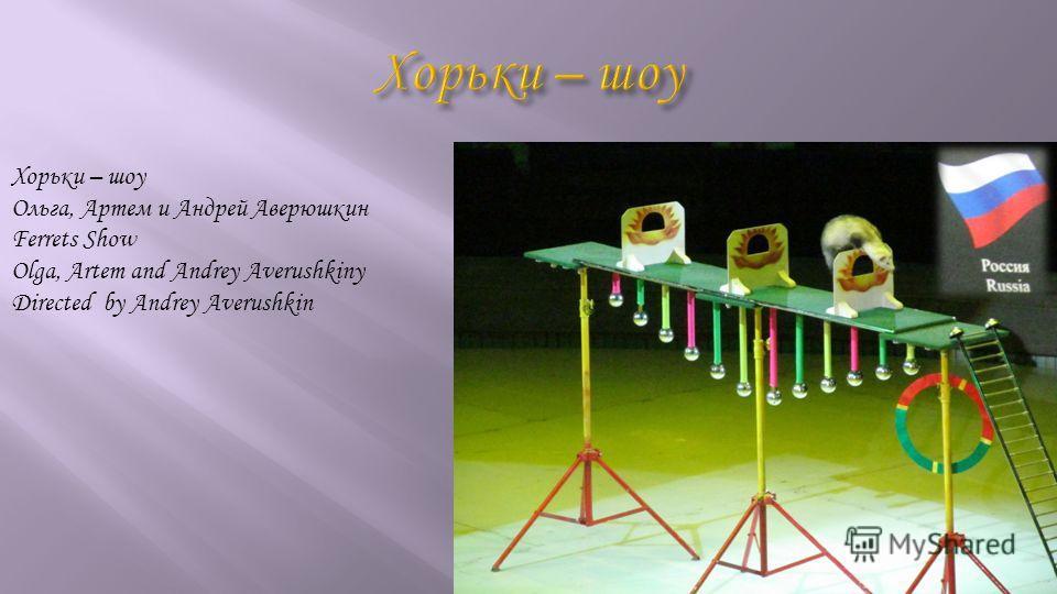 Хорьки – шоу Ольга, Артем и Андрей Аверюшкин Ferrets Show Olga, Artem and Andrey Averushkiny Directed by Andrey Averushkin