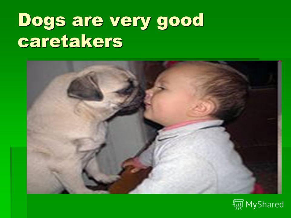 Dogs are very good caretakers