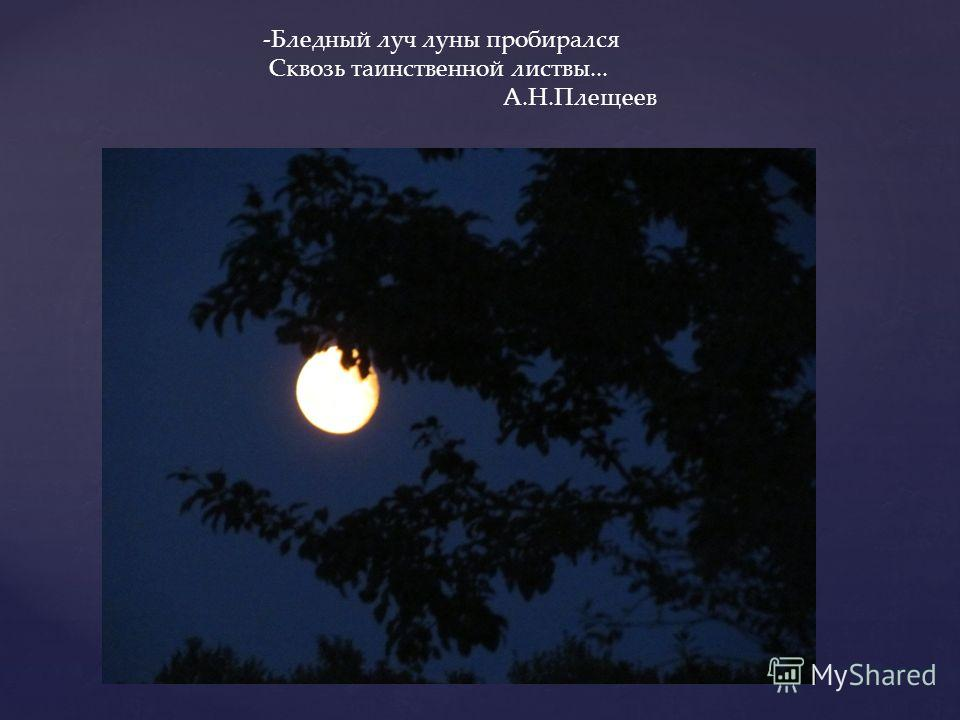 -Бледный луч луны пробирался Сквозь таинственной листвы... А.Н.Плещеев