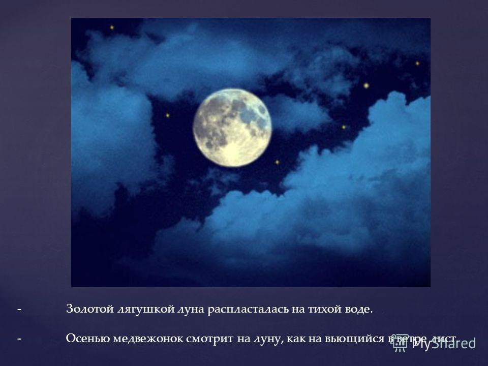 -Золотой лягушкой луна распласталась на тихой воде. -Осенью медвежонок смотрит на луну, как на вьющийся в ветре лист.