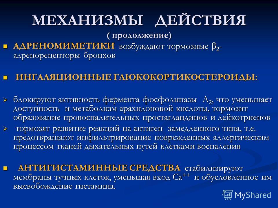 МЕХАНИЗМЫ ДЕЙСТВИЯ ( продолжение) АДРЕНОМИМЕТИКИ возбуждают тормозные 2 - адренорецепторы бронхов АДРЕНОМИМЕТИКИ возбуждают тормозные 2 - адренорецепторы бронхов ИНГАЛЯЦИОННЫЕ ГЛЮКОКОРТИКОСТЕРОИДЫ: ИНГАЛЯЦИОННЫЕ ГЛЮКОКОРТИКОСТЕРОИДЫ: блокируют активн