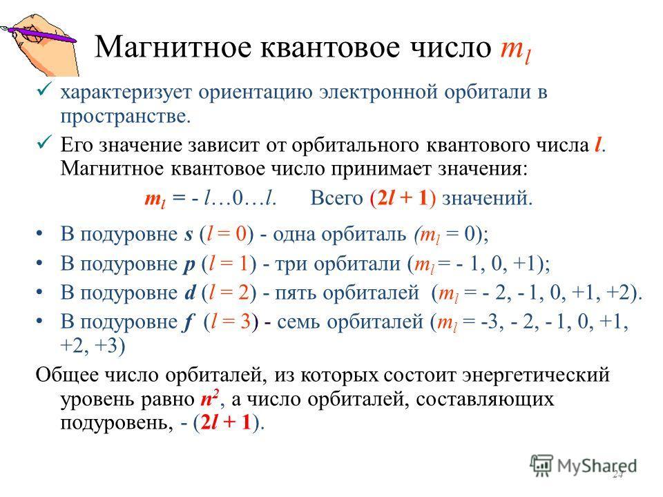 Магнитное квантовое число m l характеризует ориентацию электронной орбитали в пространстве. Его значение зависит от орбитального квантового числа l. Магнитное квантовое число принимает значения: m l = - l…0…l. Всего (2l + 1) значений. В подуровне s (