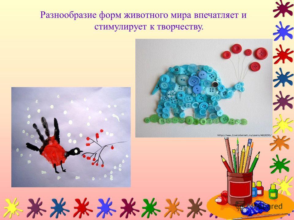 Разнообразие форм животного мира впечатляет и стимулирует к творчеству.