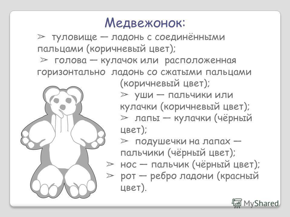 Медвежонок: туловище ладонь с соединёнными пальцами (коричневый цвет); голова кулачок или расположенная горизонтально ладонь со сжатыми пальцами (коричневый цвет); уши пальчики или кулачки (коричневый цвет); лапы кулачки (чёрный цвет); подушечки на л