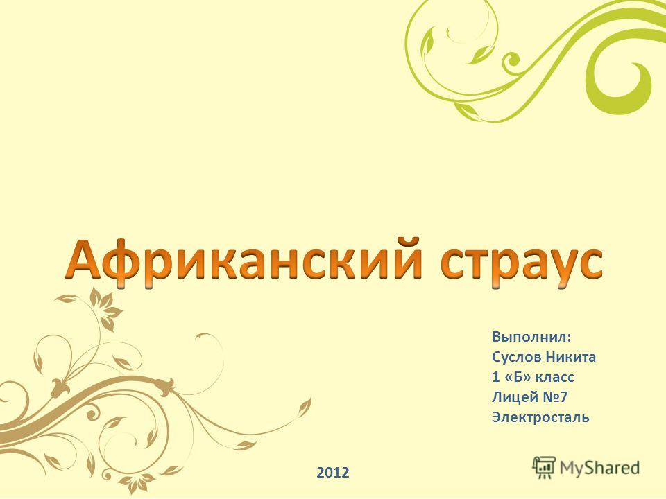 Выполнил: Суслов Никита 1 «Б» класс Лицей 7 Электросталь 2012