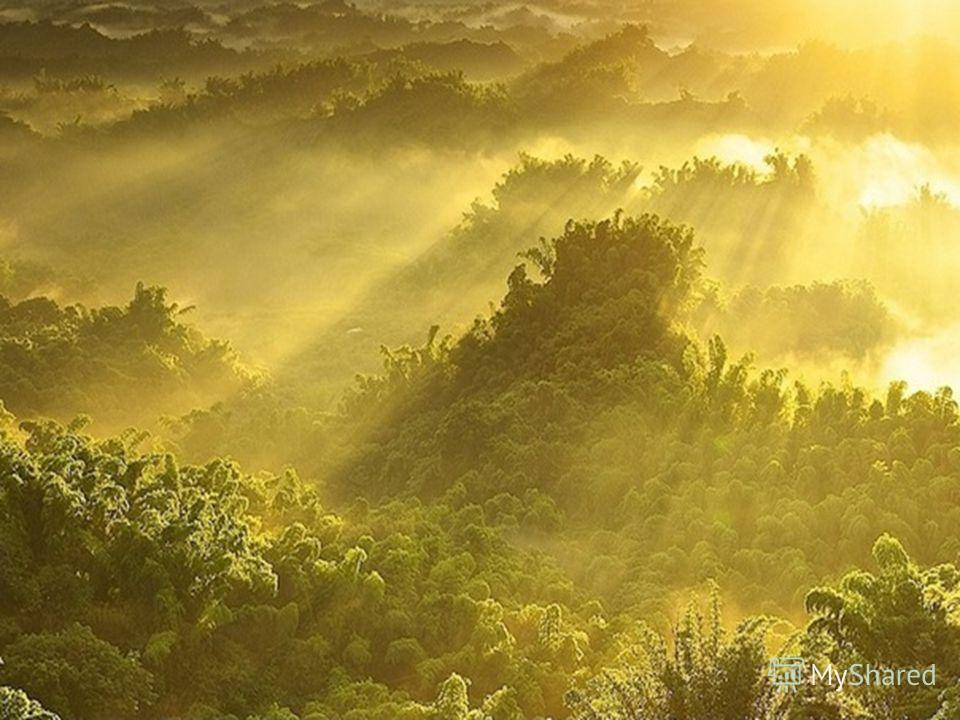 От Земли до Солнца 150 млн. км. Поэтому солнечные лучи не сжигают, а только согревают и освещают нашу планету.