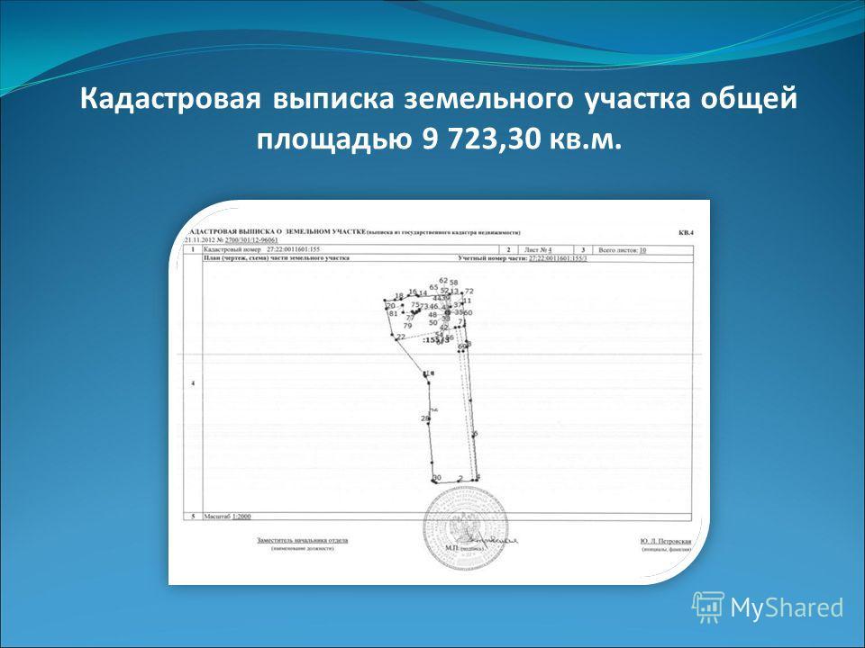 Кадастровая выписка земельного участка общей площадью 9 723,30 кв.м.