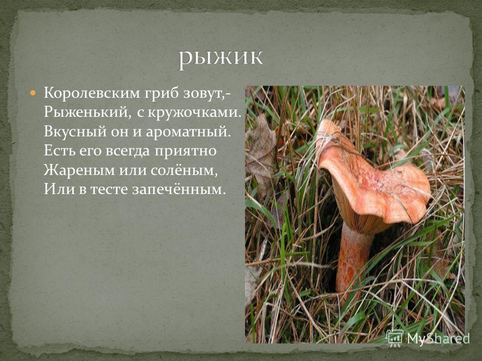 Королевским гриб зовут,- Рыженький, с кружочками. Вкусный он и ароматный. Есть его всегда приятно Жареным или солёным, Или в тесте запечённым.