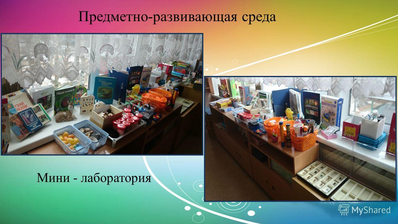 Предметно-развивающая среда Мини - лаборатория