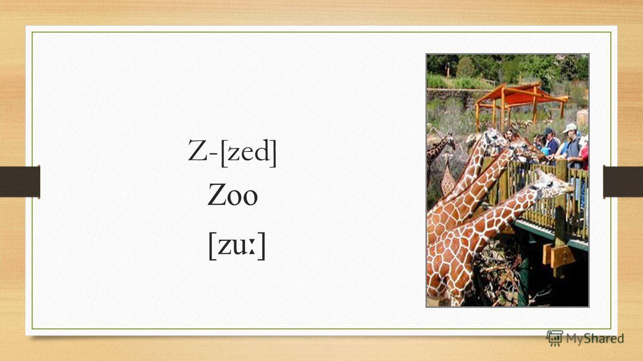 Z-[zed] Zoo [zu ː ]