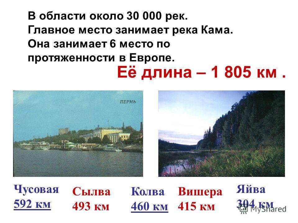 Чусовая 592 км Сылва 493 км Колва 460 км Вишера 415 км Яйва 304 км В области около 30 000 рек. Главное место занимает река Кама. Она занимает 6 место по протяженности в Европе. Её длина – 1 805 км.