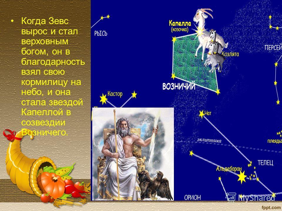 Когда Зевс вырос и стал верховным богом, он в благодарность взял свою кормилицу на небо, и она стала звездой Капеллой в созвездии Возничего.