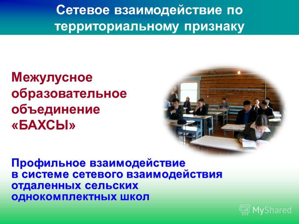 Профильное взаимодействие в системе сетевого взаимодействия отдаленных сельских однокомплектных школ Межулусное образовательное объединение «БАХСЫ» Сетевое взаимодействие по территориальному признаку