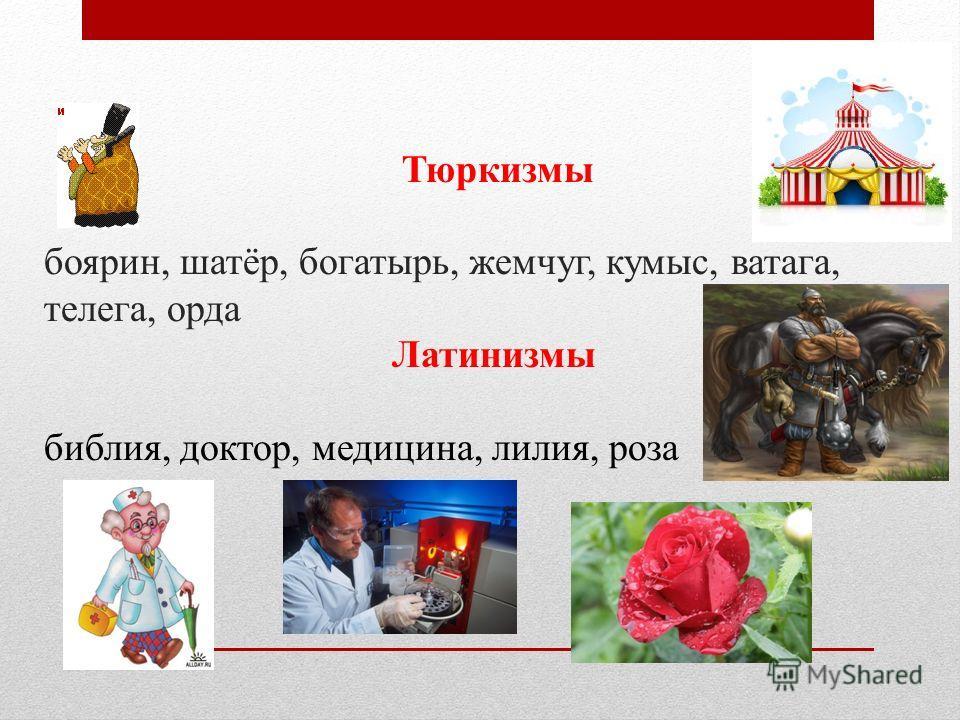 Тюркизмы боярин, шатёр, богатырь, жемчуг, кумыс, ватага, телега, орда Латинизмы библия, доктор, медицина, лилия, роза