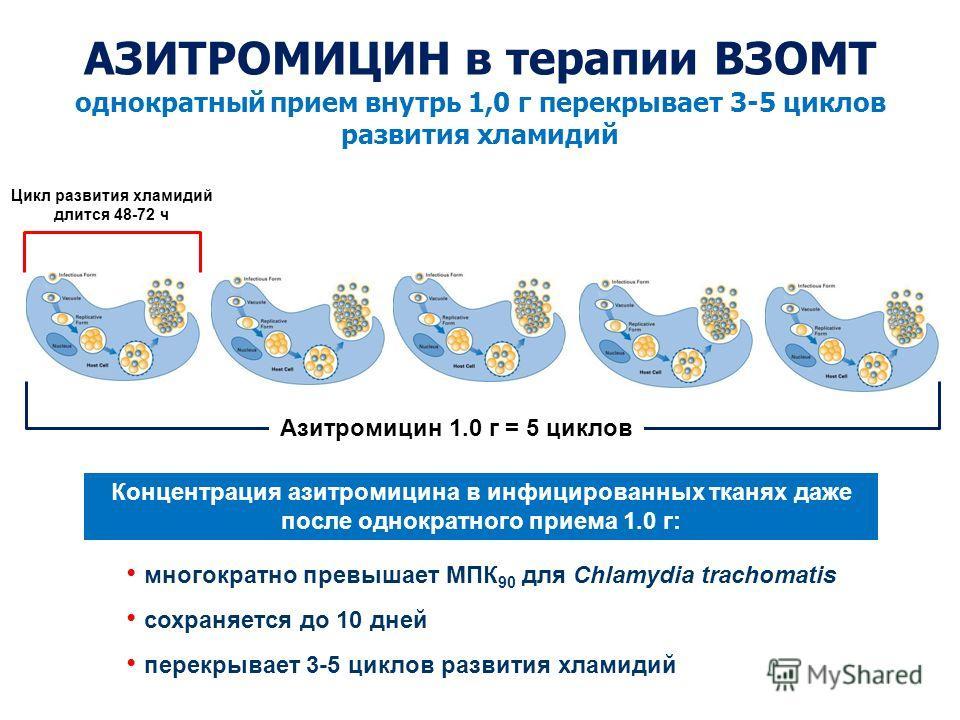 Концентрация азитромицина в инфицированных тканях даже после однократного приема 1.0 г: однократный прием внутрь 1,0 г перекрывает 3-5 циклов развития хламидий многократно превышает МПК 90 для Chlamydia trachomatis сохраняется до 10 дней перекрывает