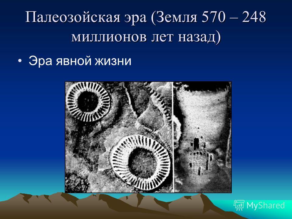 Палеозойская эра (Земля 570 – 248 миллионов лет назад) Эра явной жизни