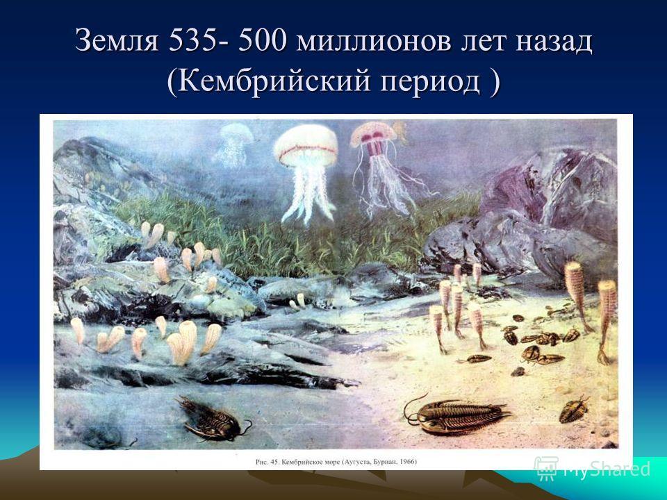 Земля 535- 500 миллионов лет назад (Кембрийский период ) Кембрийское море