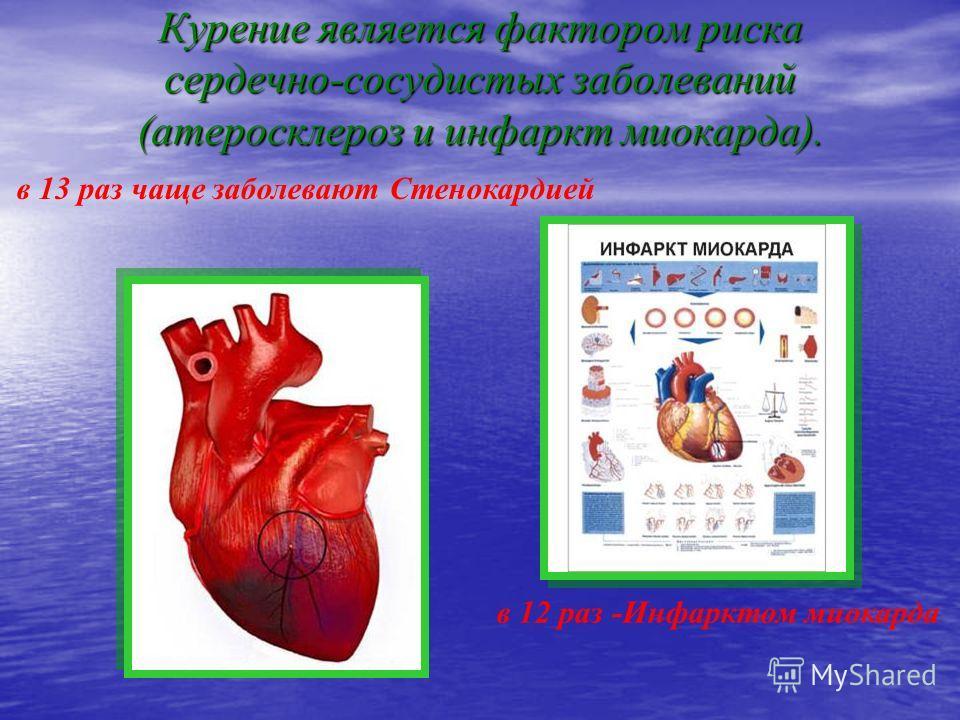 Курение является фактором риска сердечно-сосудистых заболеваний (атеросклероз и инфаркт миокарда). в 13 раз чаще заболевают Стенокардией в 12 раз -Инфарктом миокарда